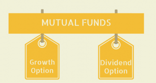 growth or dividend option in mutual funds